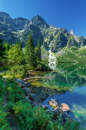 Green water lake Morskie Oko, Tatra Mountains, Poland Zdjęcie Seryjne