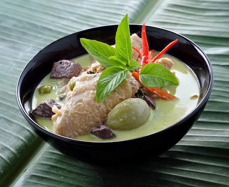 Green curry chicken , Thai cuisine photo