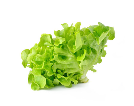 fresh green lettuce leaves isolated on white Stok Fotoğraf