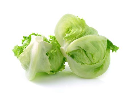 lechuga: Verde lechuga Iceberg en el fondo blanco
