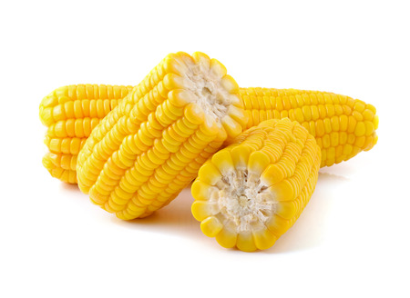corn: Corn on a white background