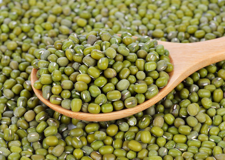 black gram: Mung beans in wooden spoon on mung beans background. Stock Photo
