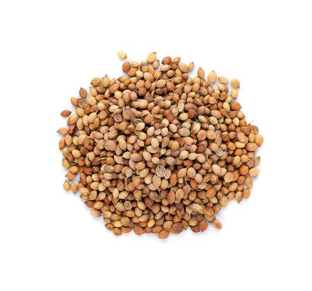 coriander seeds: Coriander seeds isolated on white background Stock Photo