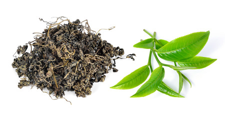 pekoe: Heap of dry tea with green tea leaves isolated on a white background.