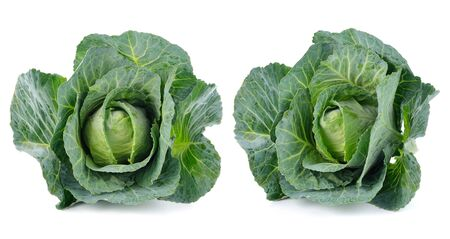jhy: Green cabbage isolated on white background