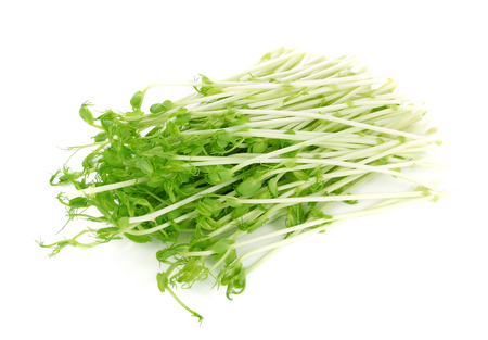 Green Pea Sprouts isolated on white