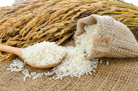 white rice (Thai Jasmine rice) and unmilled rice