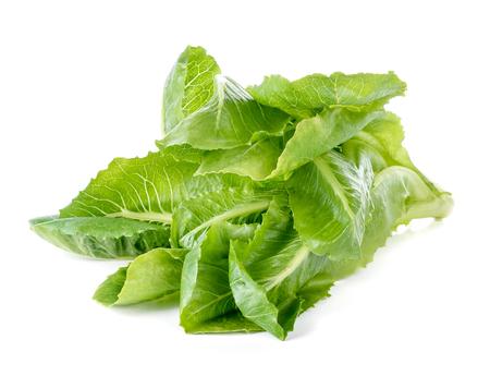 Cos Lettuce on White Background Zdjęcie Seryjne - 122186400