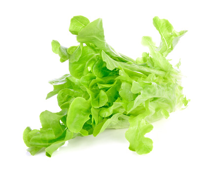 lettuce leaves isolated on white background Zdjęcie Seryjne - 122186402
