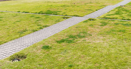stepped: pathway stepped on the lawn in the park Stock Photo