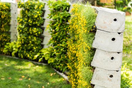 flower wall is vertical garden