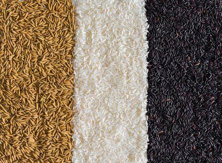 Food background with three rows of rice varieties : brown rice, black rice, white (jasmine) rice