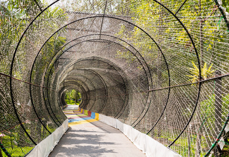 tunnel light: tunnel light and nature background