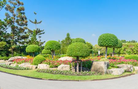 Garten- und Landschaftsbau mit dekorativen Pflanzen und Bäume