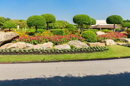 Giardinaggio e paesaggistica con alberi decorativi e Piante Archivio Fotografico