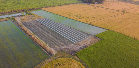 Aerial view from drone The field soil reclamation in preparation for seeding or planting Stock Photo
