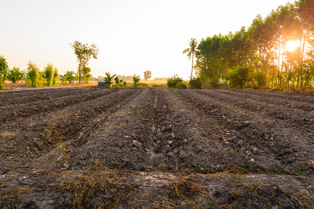 The field soil reclamation in preparation for seeding or planting Stock Photo