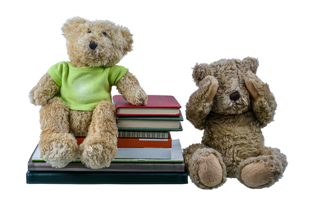 Cute brown bear doll Sitting on Many books and another doll two hands closed their eyes, showing regret and dismal isolated on white background. Embarrassment with learning different emotional concept Stockfoto