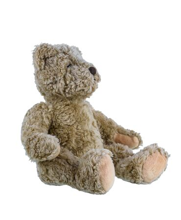 Cute brown teddy bear isolated on white background.