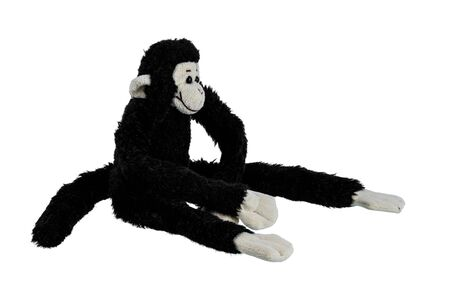 Black monkey doll long arm, long leg isolated on white background. Childrens toys and gifts for peoplee all ages. Side view 写真素材