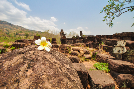 The white flowers on the rock,Behind the ruins of the archaeological site and it blur, Loas Stock Photo