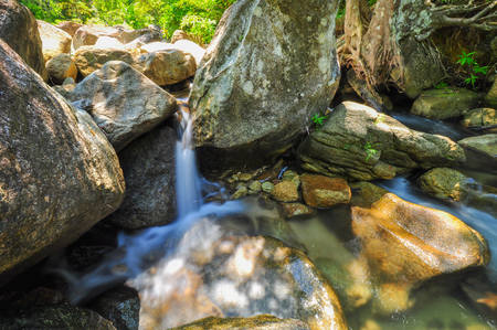 The soft stream is flowing through the rocks,The behind is fresh green forest on clear day and very strong sunshine, Have a cobweb between rock.