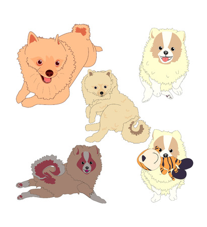 spitz: dog cartoon illustration series 3 Illustration