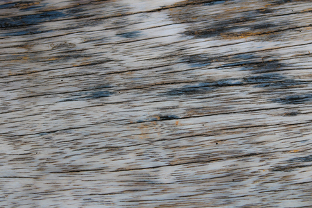 Background and textures abstract