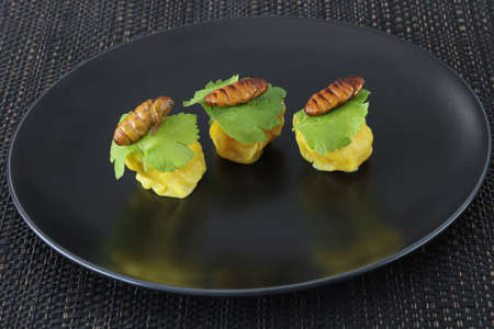 Insects food.Fried silkworm pupae with Chinese steamed dumpling close up on black dish.Silkworm pupae are rich protein and good fats.Insects are food future for all people Archivio Fotografico