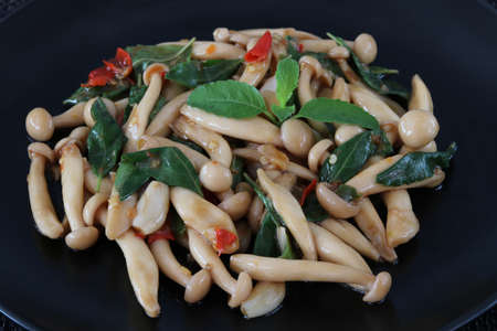 Thai food,stir fried shimeji mushroom with basil.This popular Thai dish serve with steamed rice.