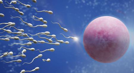 De 3D-rendering Sperma- en eicelwetenschappelijke inhoud. Stockfoto