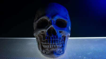 skull in the blue light dark tone for background content Stock fotó