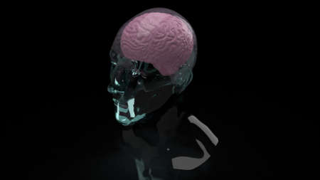 brain inside crystal head for education or sci content 3d rendering 写真素材 - 167268950