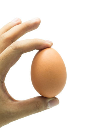 hand holding egg photo