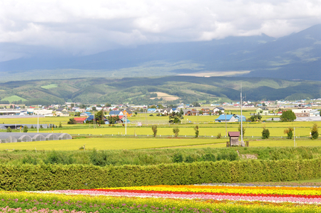 Agriculture area in Hokkaido, Japan