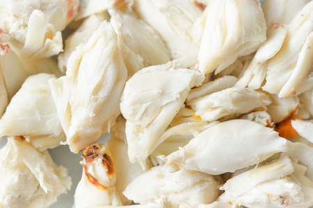crabmeat: Steamed crab meat from blue crab (close up)