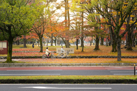 2 way: Local people are riding bikes along the street in Nara, close to Nara park, Nara, Japan