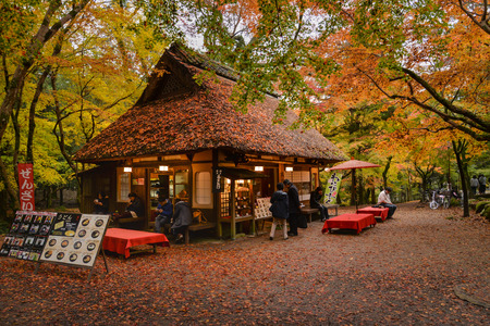 teahouse: Tourists are taking a rest, having some food and tea at traditional style teahouse after a walk in Nara Park, Nara, Japan
