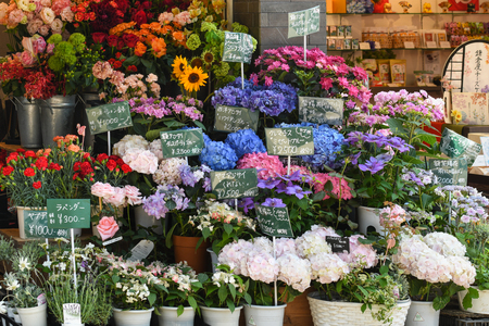 merchant: Kamakura, Japan - May 18, 2017: Varieties of local flowers are sold along Komachi street, a famous shopping street in Kamakura, Japan