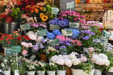 Kamakura, Japan - May 18, 2017: Varieties of local flowers are sold along Komachi street, a famous shopping street in Kamakura, Japan