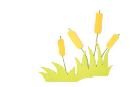Cattail 용지 절연 - 흰색 배경에 잘라 내기 스톡 콘텐츠