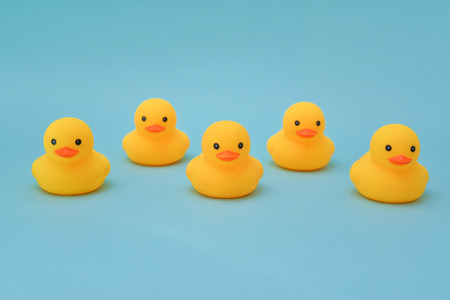 Discipline concept, rubber ducky are lining up facing same direction Stock Photo