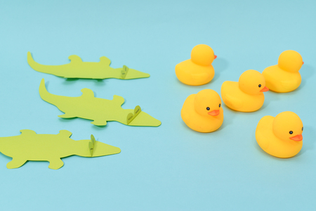 Defeat concept, rubber ducks are chased by crocodiles.