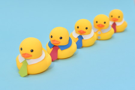 Office life concept, rubber ducks are waring neckties