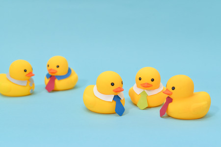 Office meeting concept, rubber ducks are discussing. Stock Photo