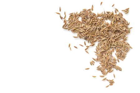 Cumin seed on white background from top view