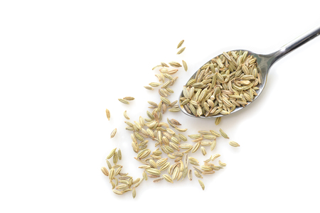 Fennel seed in a spoon on white background from top view