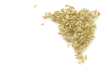 Fennel seed on white background from top view