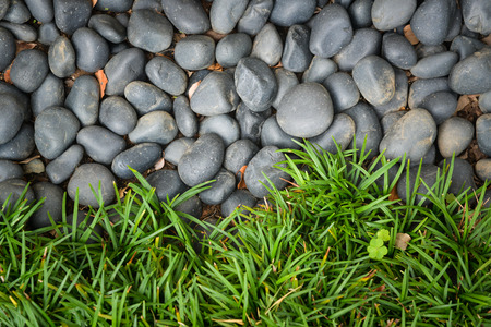 Black marbles and grass background - top view