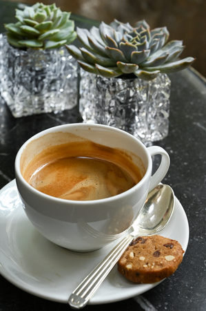 Cup of coffee and succulent plant on black marble table